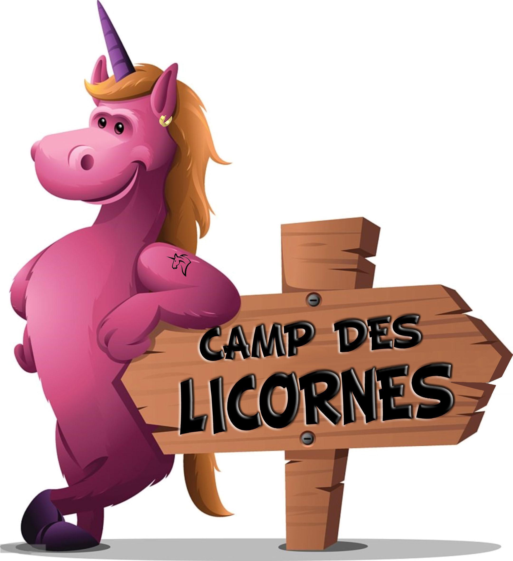 Centre De Loisirs Camp Des Licornes